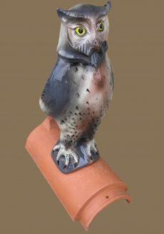 Gockel & andere Vögel